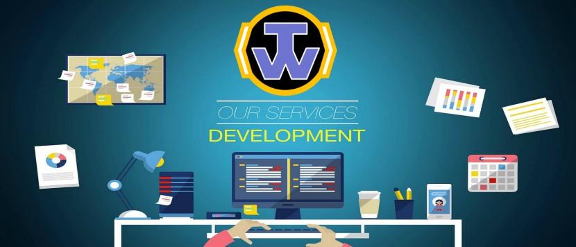 Software-Developer-Services